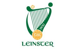 U18 Hurling Leinster Semi-final