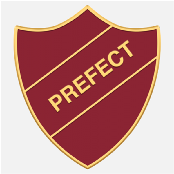 Prefect application 2021-22